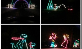 Holiday Lights in the Park 2016 – Save $2 Online