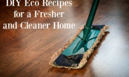 DIY Eco Recipes for a Fresher and Cleaner Home