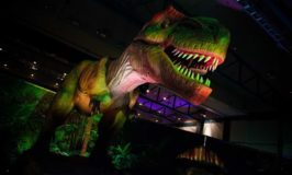 Discover the Dinosaurs UNLEASHED is coming to Minneapolis February 10 – 12 (Ticket Discount)