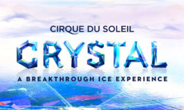 Discount Tickets for Cirque du Soleil, Minnesota Twins, & Minnesota Vikings Preseason Football