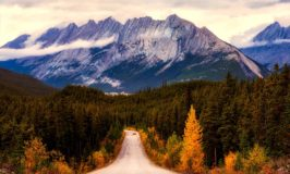 4 Creative and Budget-Friendly Fall Travel Tips